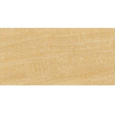 Mẫu gạch ốp tường phòng khách Viglacera BS3605