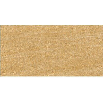 Mẫu gạch ốp tường Viglacera BS3606