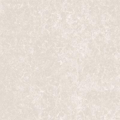 Gạch lát nền Viglacera 60×60 TS2-617