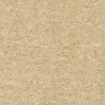 Gạch lát nền Viglacera 60x60cm TS2-626