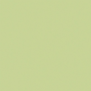 Gạch lát nền Granite Viglacera 60x60 TS5-604