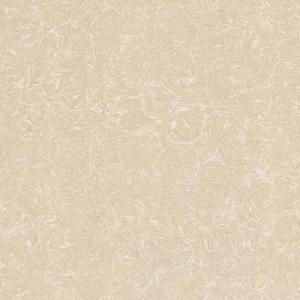 Gạch lát nền Granite TS2-812