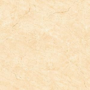 Gạch lát nền H503