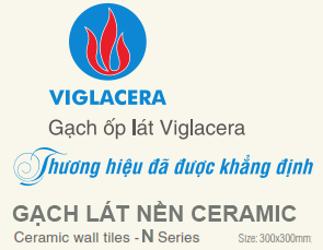Gạch Viglacera N3622