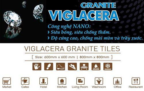 Gạch lát nền Viglacera TS1-617