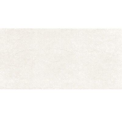 Gạch ốp tường Viglacera 30×60 F3601