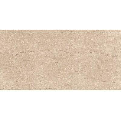 Gạch ốp tường 30×60 Viglacera F3602