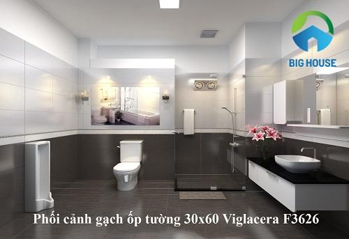 gạch ốp tường Viglacera F3626