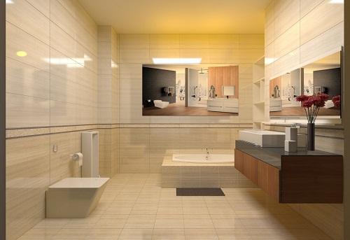 mẫu gạch ốp lát nhà vệ sinh 2