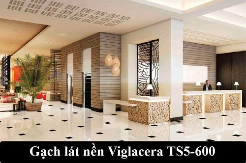 Gạch lát nền Viglacera TS5-600