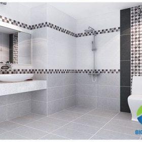 5 Mẫu gạch ốp nhà vệ sinh Viglacera ĐẸP, GIÁ RẺ, HOT nhất 2018