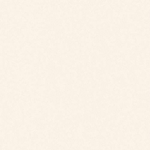 Gạch lát nền Viglacera 60×60 TS5-600