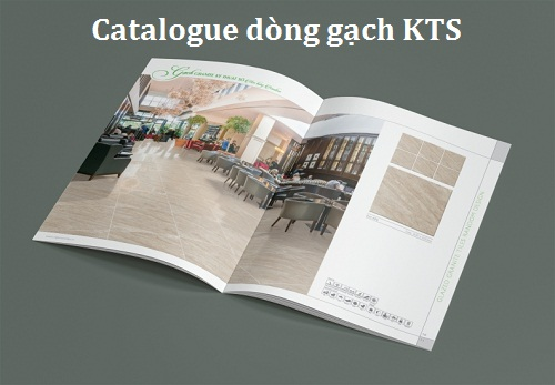 catalogue gạch viglacera 2
