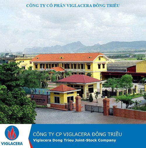 Công ty Gạch Viglacera Đông Triều: Quá trình thành lập và phát triển