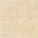 gạch lát nền chống nồm kt602