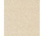 gạch chống trầy xước Viglacera TS2-612