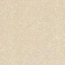 gạch lát nền chống xước ts2-812