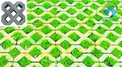 thi công gạch trồng cỏ