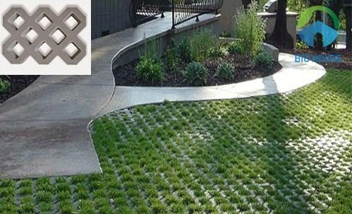 gạch lát sân vườn trồng cỏ 8 lỗ