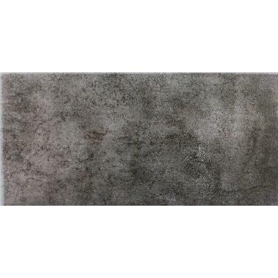 Gạch ốp tường Eurotile Viglacera 30×60 MDK36005