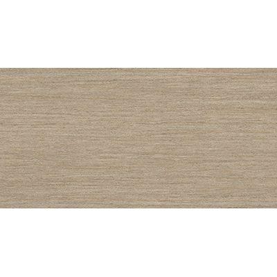 Gạch ốp tường Viglacera 30×60 SQ3602
