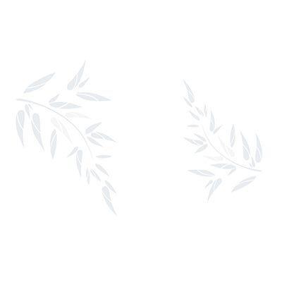 Gạch ốp tường Viglacera 30×45 UB4501