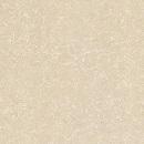 gạch viglacera ts 812