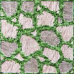 giá gạch lát sân vườn viglacera 2