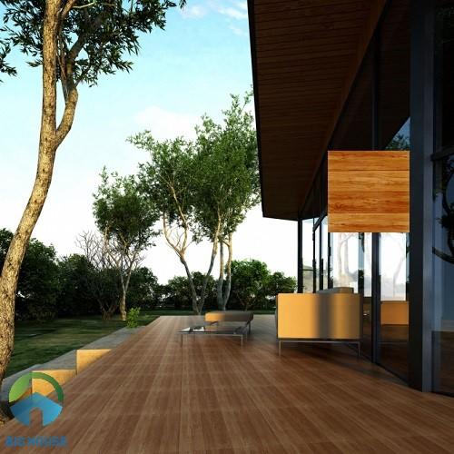 Mẫu gạch vân gỗ Viglacera GM501