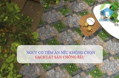 Những NGUY CƠ tiềm ẩn nếu không chọn gạch lát sân chống rêu