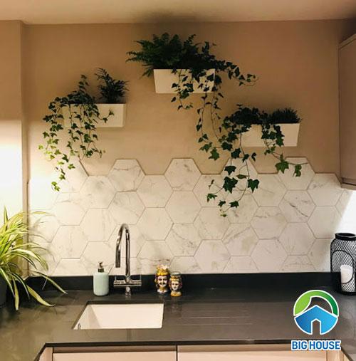 gạch lục giác trang trí màu trắng ốp tường