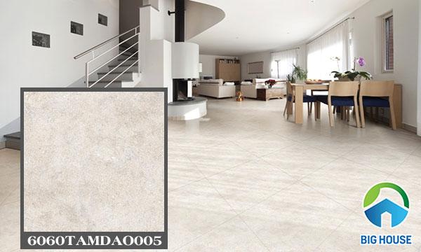 mẫu gạch lát sàn đồng tâm 6060tamdao005