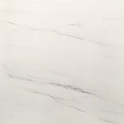 Gạch lát nền Viglacera 50×50 H507