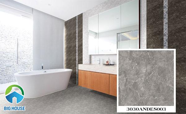 Gạch lát nền nhà tắm đẹp Đồng Tâm 3030ANDES003