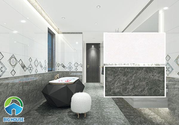 Bộ gạch ốp tường Tasa vân đá màu xám và màu nhạt sang trọng