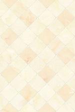 gạch ốp tường viglacera 30x45 b4591