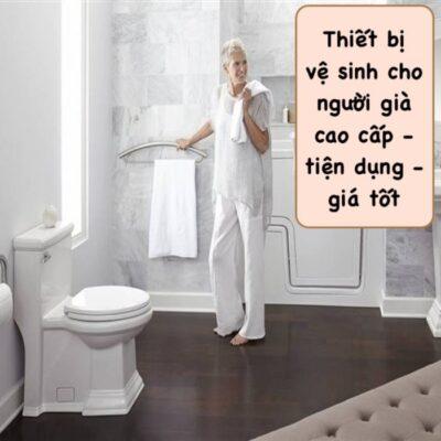 Các mẫu thiết bị vệ sinh cho người già chính hãng và tiện lợi nhất