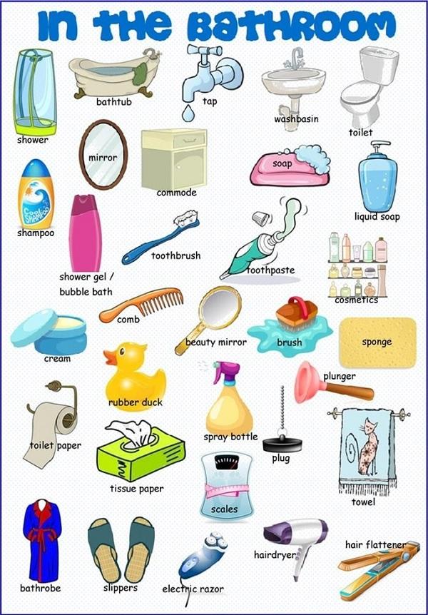 thiết bị vệ sinh tiếng Anh